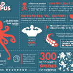 World Octopus Day!