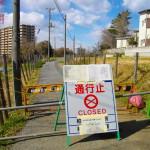 Kan het weer, in Fukushima wonen?